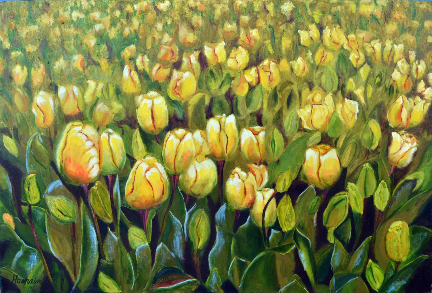 Tulips In Istanbul, 36X24 Inches,oil On Canvas, 2012